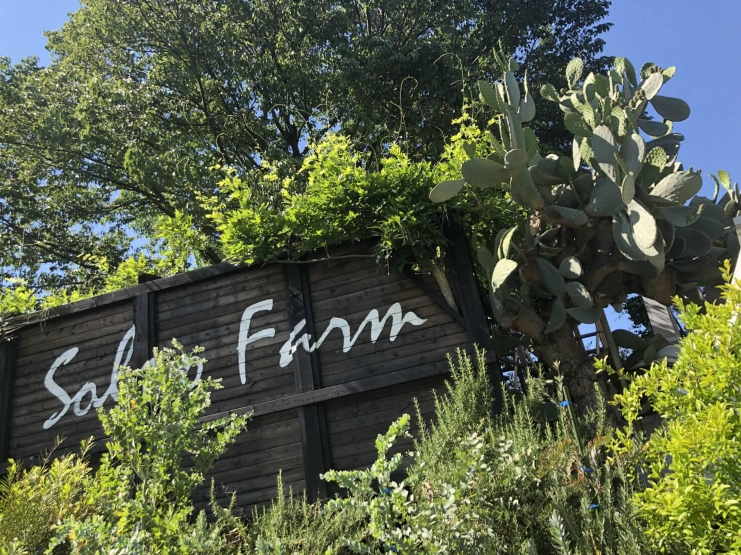 人気植物ショップSOLSO FARM(ソルソファーム)営業時間・アクセス・店舗情報