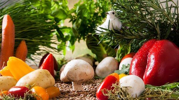 自分だけの家庭菜園の作り方 苗植え~収穫【ビギナーでも簡単】