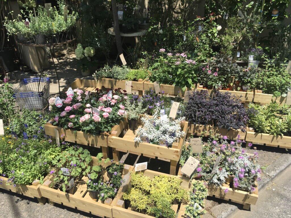 グリーン好き必見!都内のお洒落な植物店&雑貨ショップお勧め7選