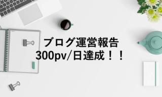 ブログ300pv/日突破!有料テーマ・トレンド記事ではなくても達成出来る!!